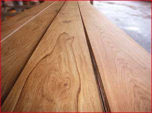 auftragsmedium leimauftragsmaschinen lauftrag wachsauftragsmaschinen und. Black Bedroom Furniture Sets. Home Design Ideas